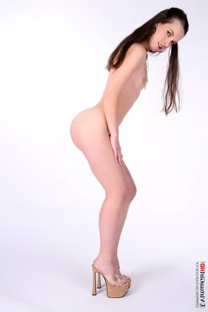 Yvette escorts in Stafford